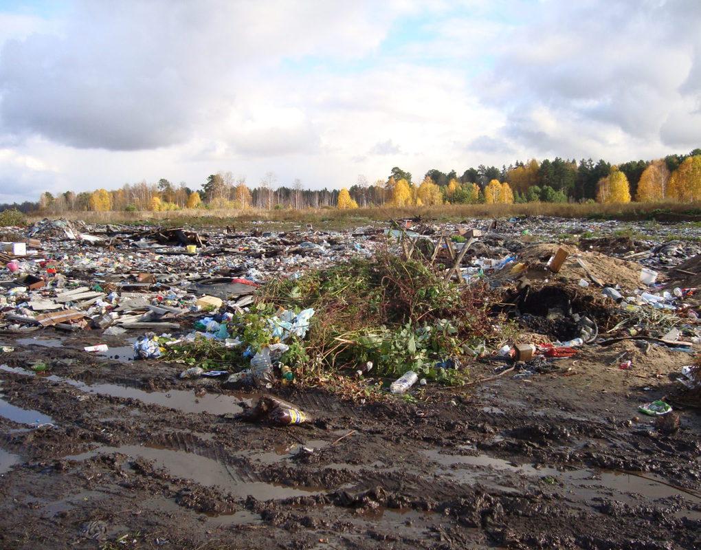 В Брянске водитель грейфера устроил свалку строительных отходов на поле с черноземом