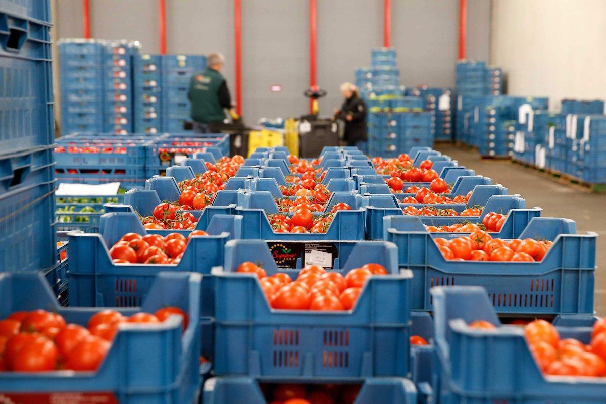 В Брянской области экспорт продовольствия в 2021 году составил 29,6 млн долларов