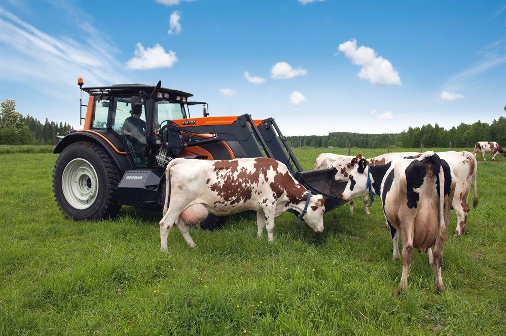 Брянские начинающие фермеры получат почти 36 млн рублей