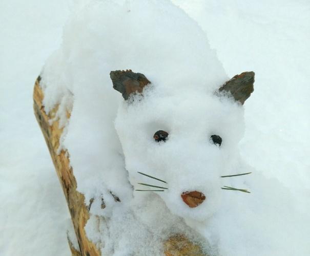 В брянском лесу поселились снежные животные