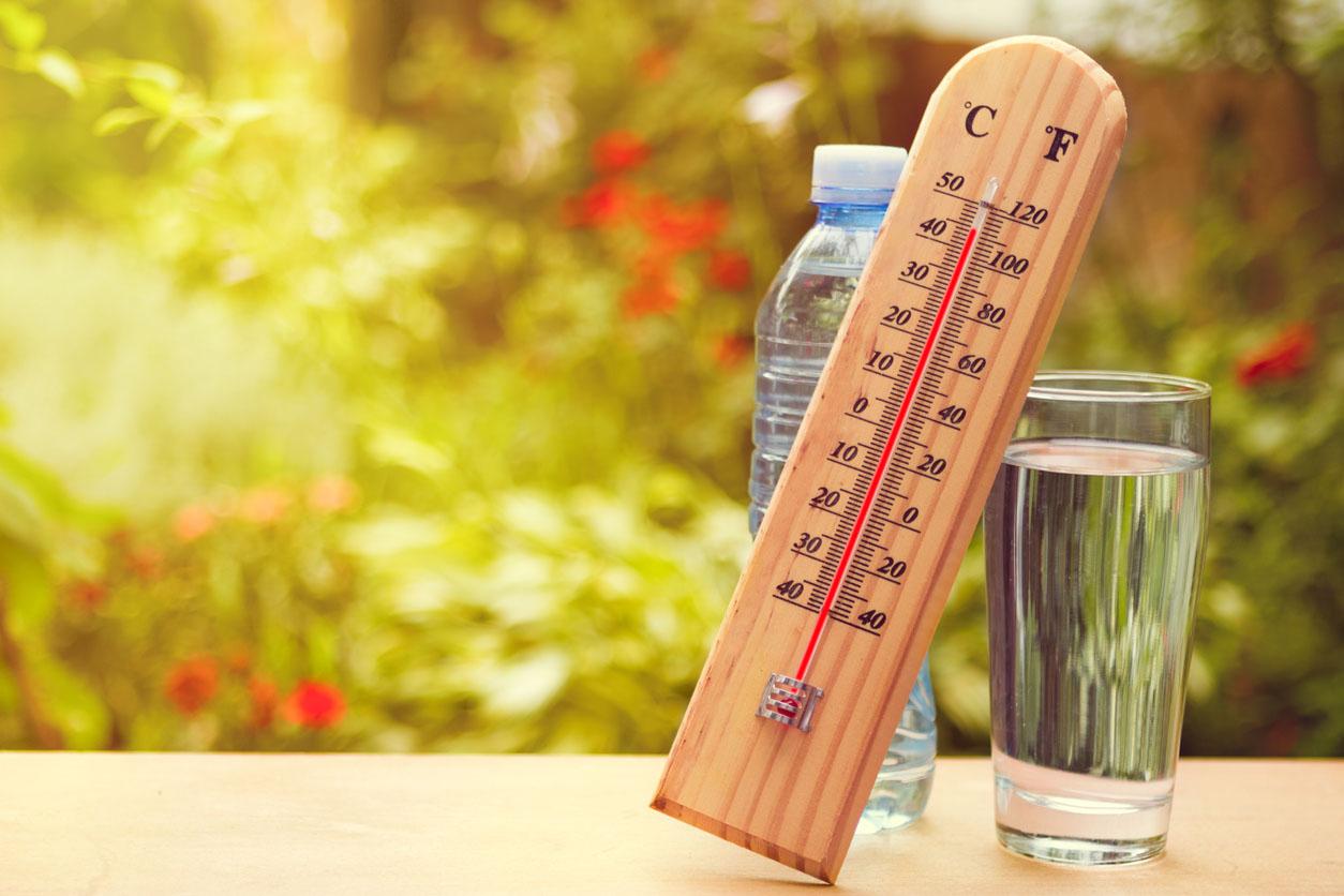 Брянскую область 21 июня ожидает 33-градусная жара