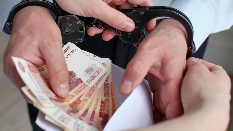 В Брянской области иностранного гражданина осудят за взятку полицейскому