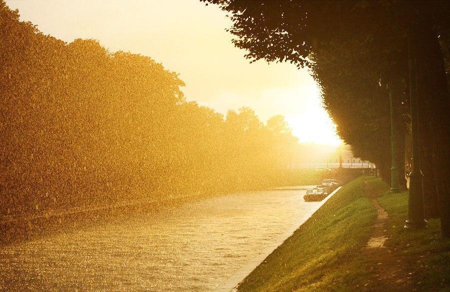 На Брянщине 26 июня температура воздуха повысится до +37 градусов и пойдет ливень