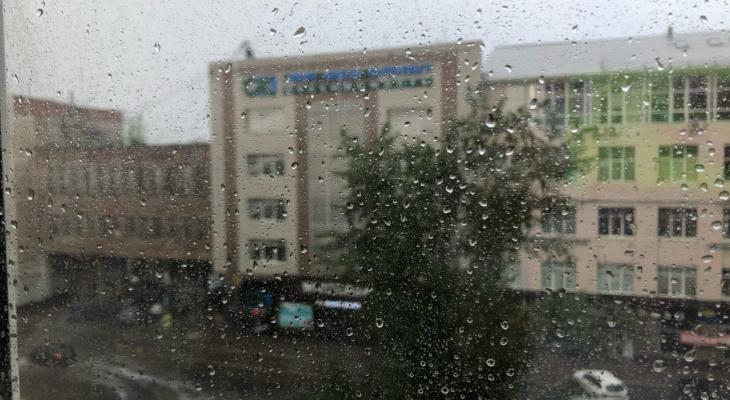 МЧС оповестило брянцев о грозе с дождем и ураганном ветре 21 июля