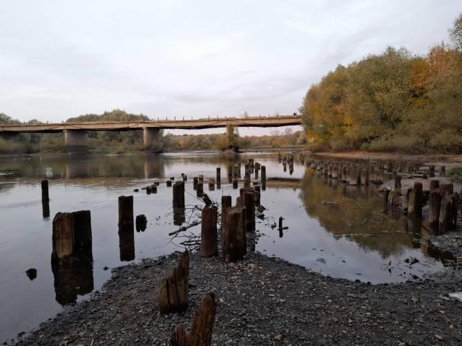 На расчистку реки Десны в Брянске направят 116 млн рублей