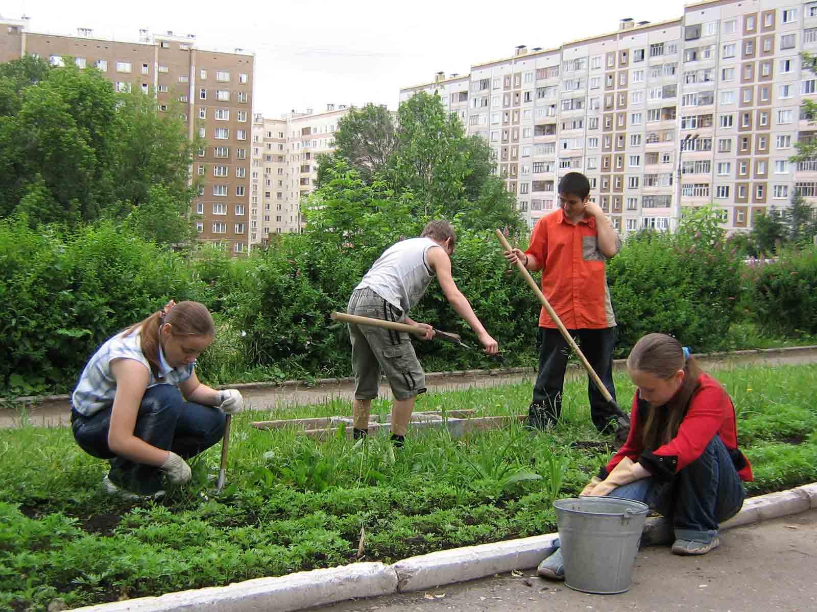 В Брянске летом для подростков создадут 740 рабочих мест с выплатой заработной платы