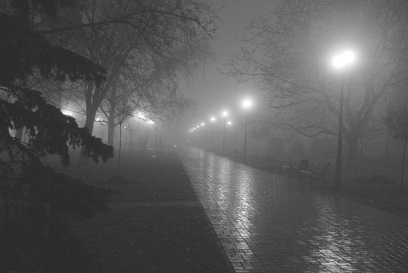 В Брянской области продлили желтый уровень погодной опасности из-за грозы и тумана