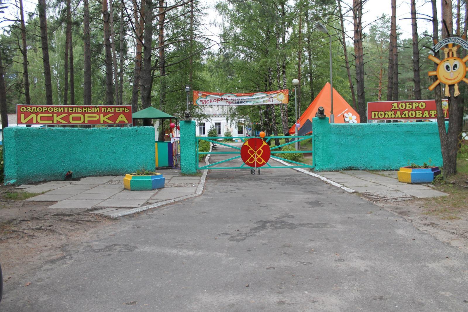 В Брянской области детям выдадут бесплатные путевки в оздоровительный лагерь