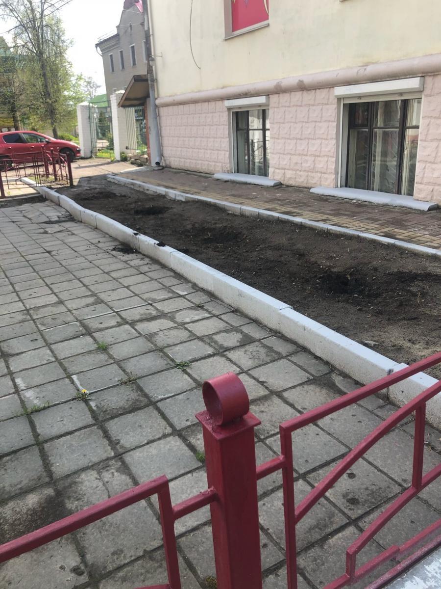 В центре Брянска таинственно исчезли декоративные туи