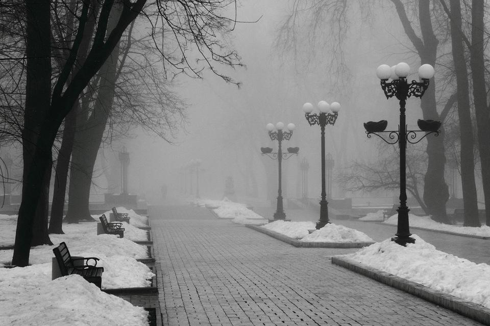 18 декабря в Брянской области прогнозируют туман и гололедицу