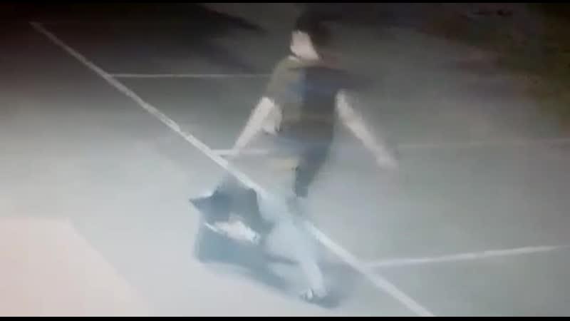 Женщина похитила ребенка у соседки по палате