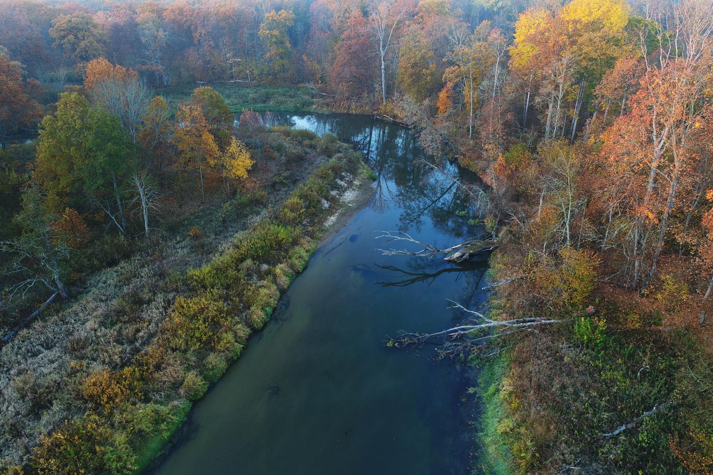 В Брянской области ущерб от экологических преступлений превысил 19 миллионов рублей