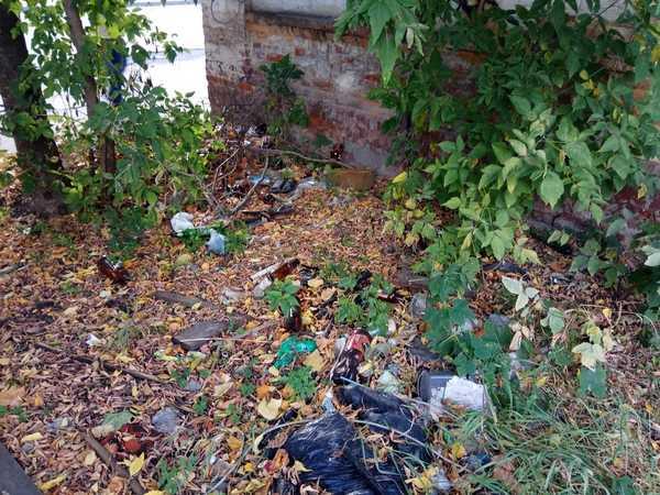 В Брянске обнаружили зловонную свалку рядом с детсадом «Снежинка»