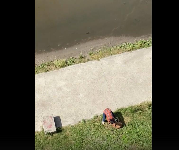 В Брянске неадекватная женщина жестоко избила и обматерила свою собаку на глазах у ребенка