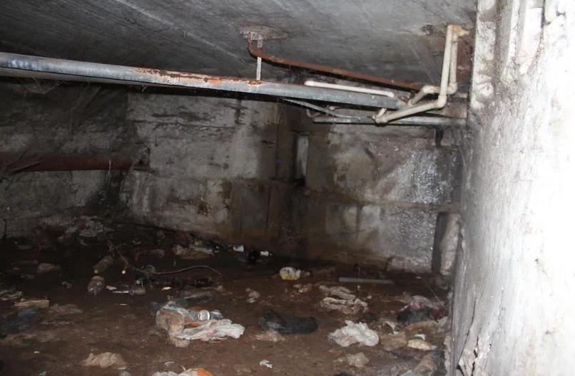 Жители Брянска пожаловались на ужасное состояние подвала в многоквартирном доме по Киевской