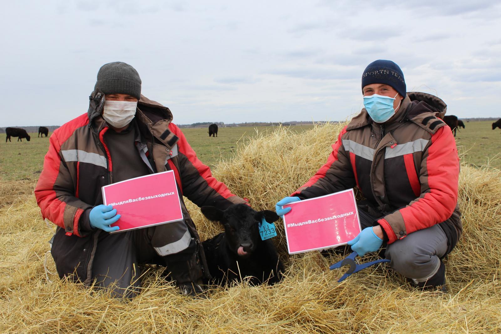 «Мираторг» присоединился ко всероссийскому аграрному флэшмобу #мыдлявасбезвыходных