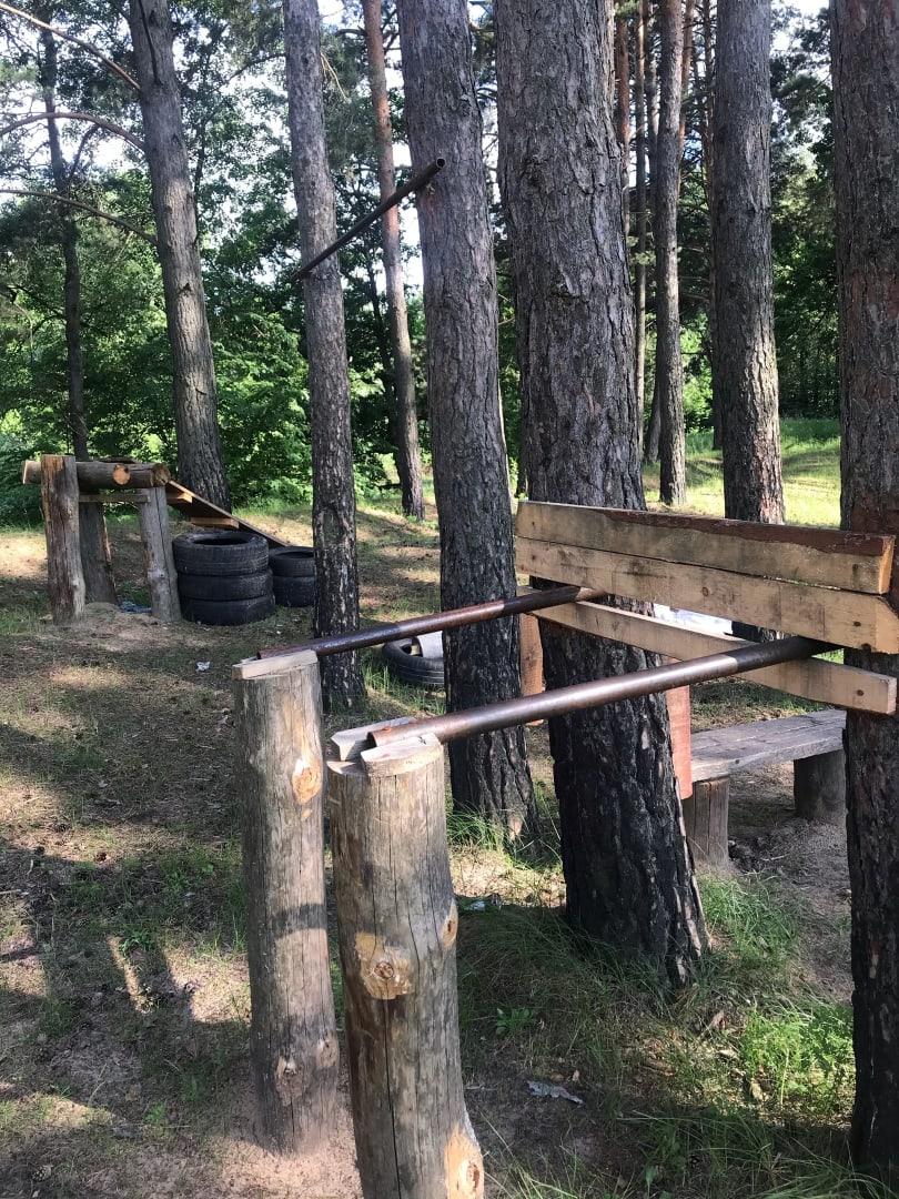 В брянском лесу появился тренажерный зал