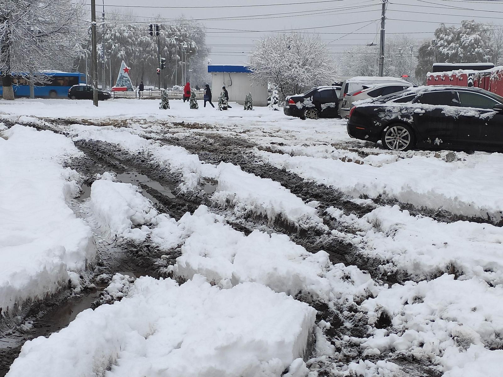 Неравнодушный житель Брянска пожаловался на грязь в центре города