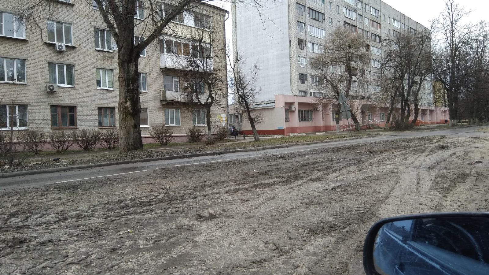 В Брянске на улице Молодой Гвардии просят сделать дорогу и освещение