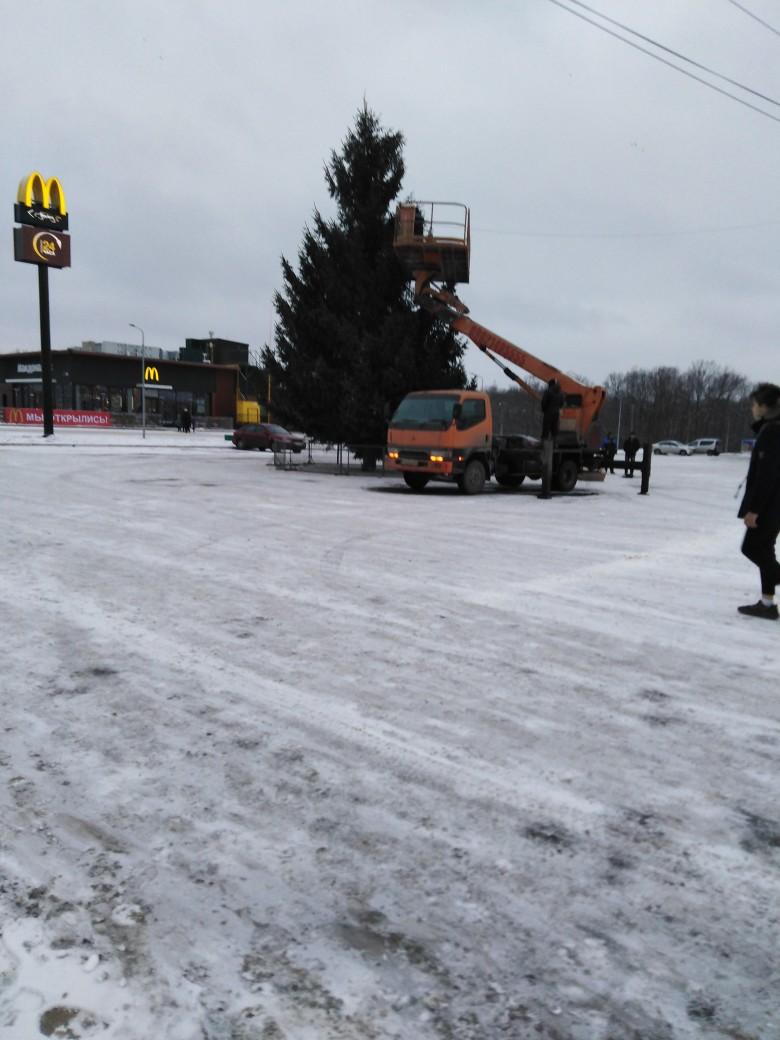 В Брянске возле «Линии» устанавливают новогоднюю елку