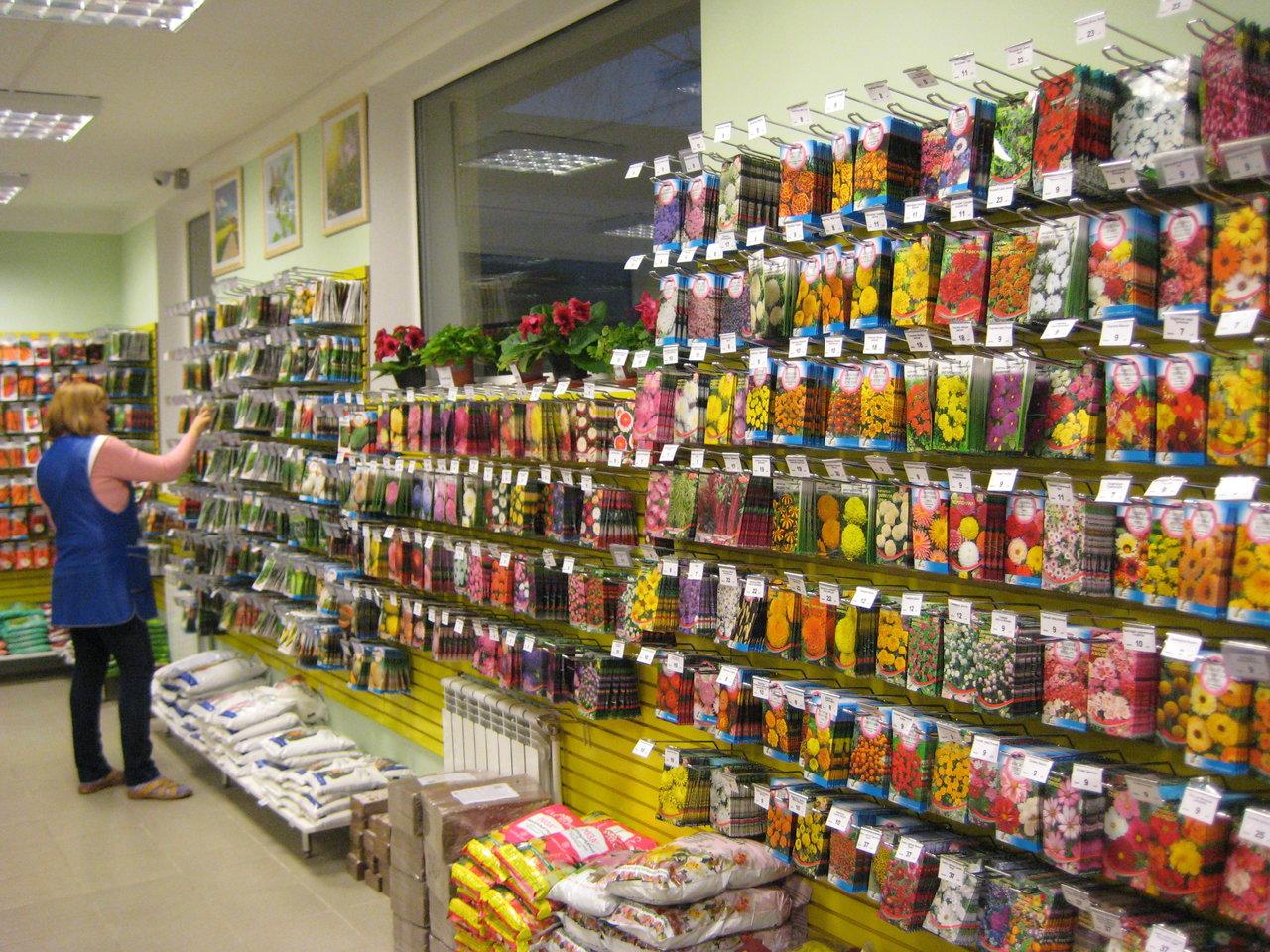 В Брянске страдают дачники и продавцы магазинов семян
