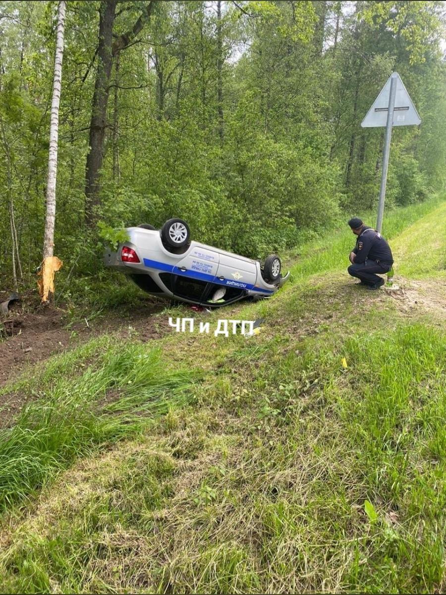 На трассе под Злынкой из-за косули опрокинулась машина ГИБДД