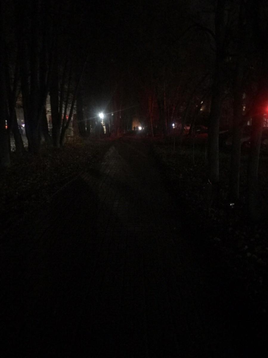 Брянцы боятся идти по аллее из-за непроглядной тьмы