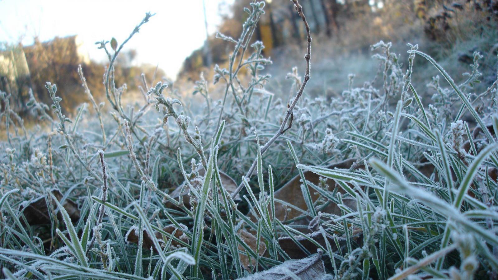 В октябре по Брянску ударят холода