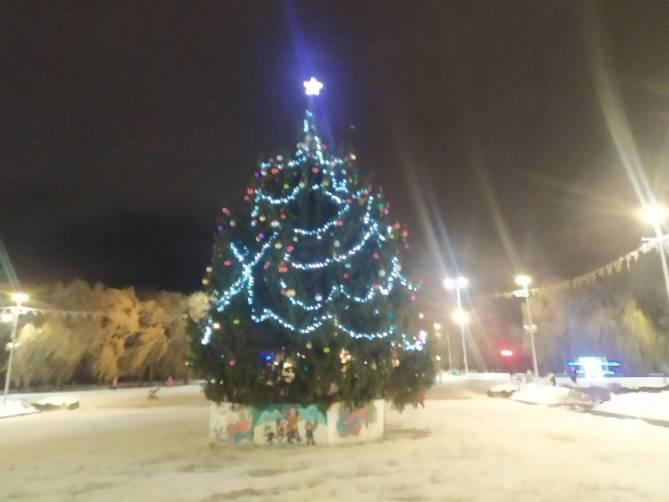 В Брянске украсили новогоднюю ель на Кургане Бессмертия