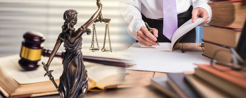 Брянские семьи могут получить бесплатную юридическую консультацию
