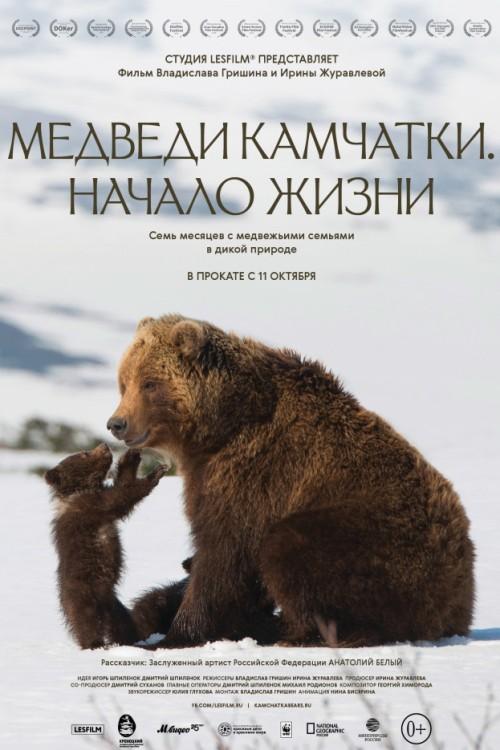 В Брянске состоится премьера фильма про медведей Камчатки