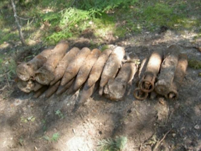 В Карачевском районе нашли 22артиллерийскихснаряда
