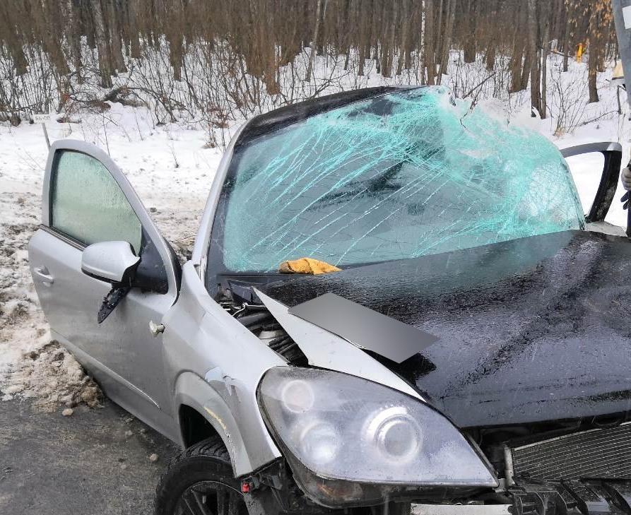 В Брянске ищут свидетелей смертельного ДТП на брянской трассе