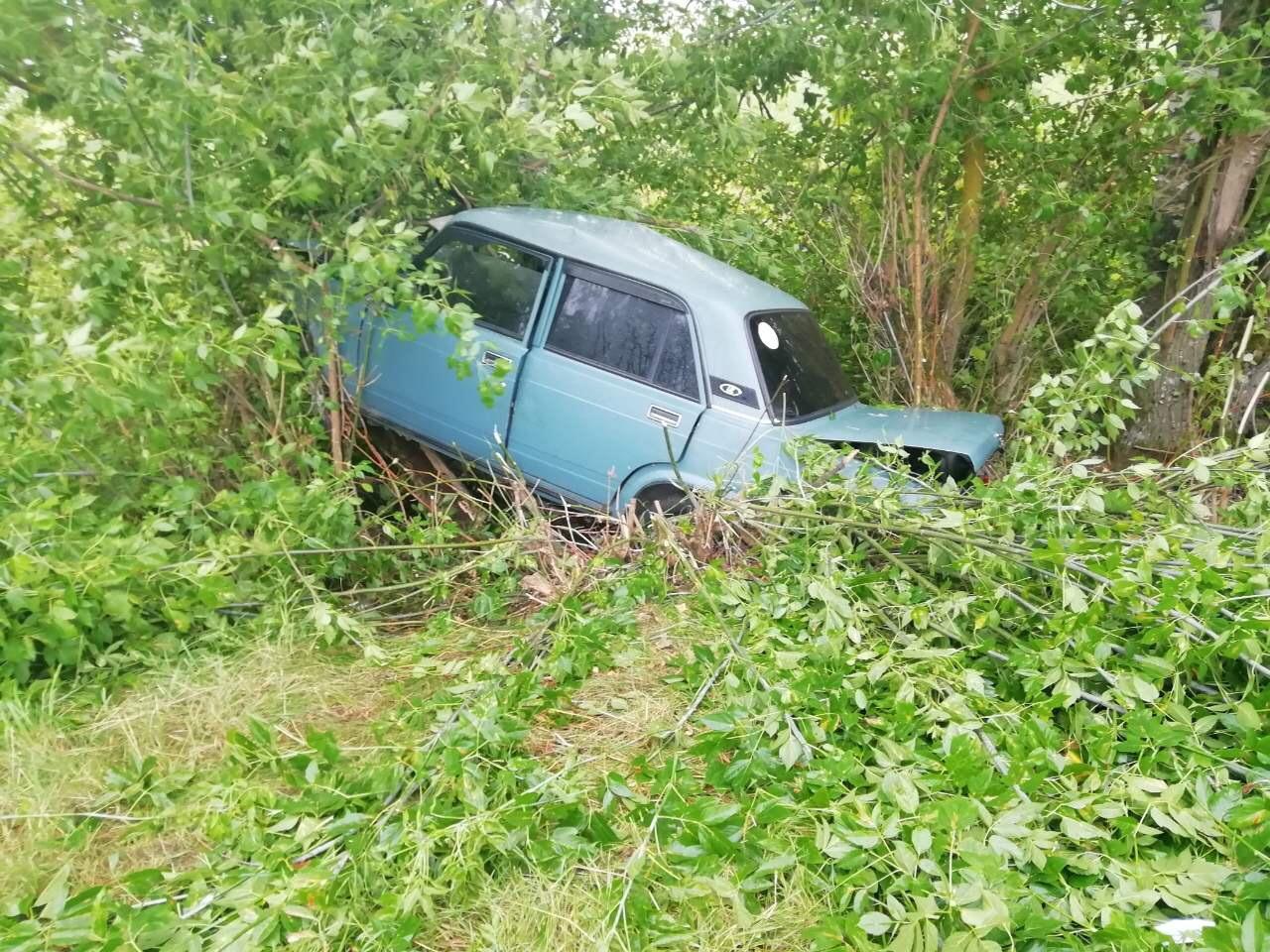 В Дубровском районе пьяный водитель ВАЗа покалечил себя и пассажира