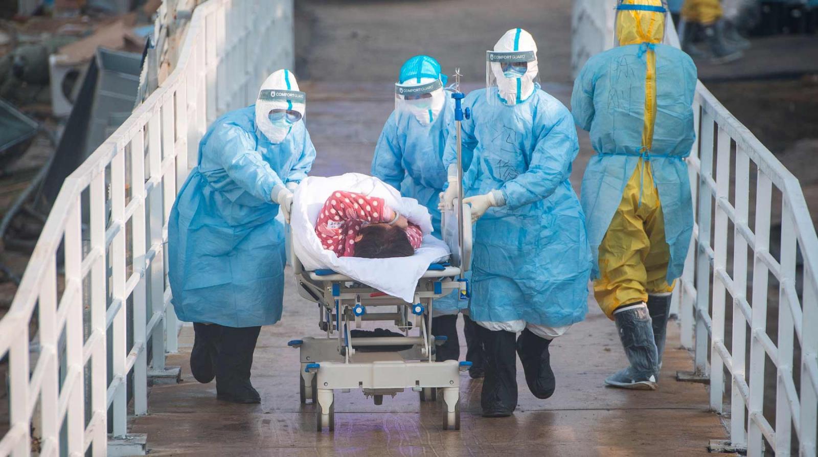 203 человека в Брянской области заразились коронавирусом за сутки