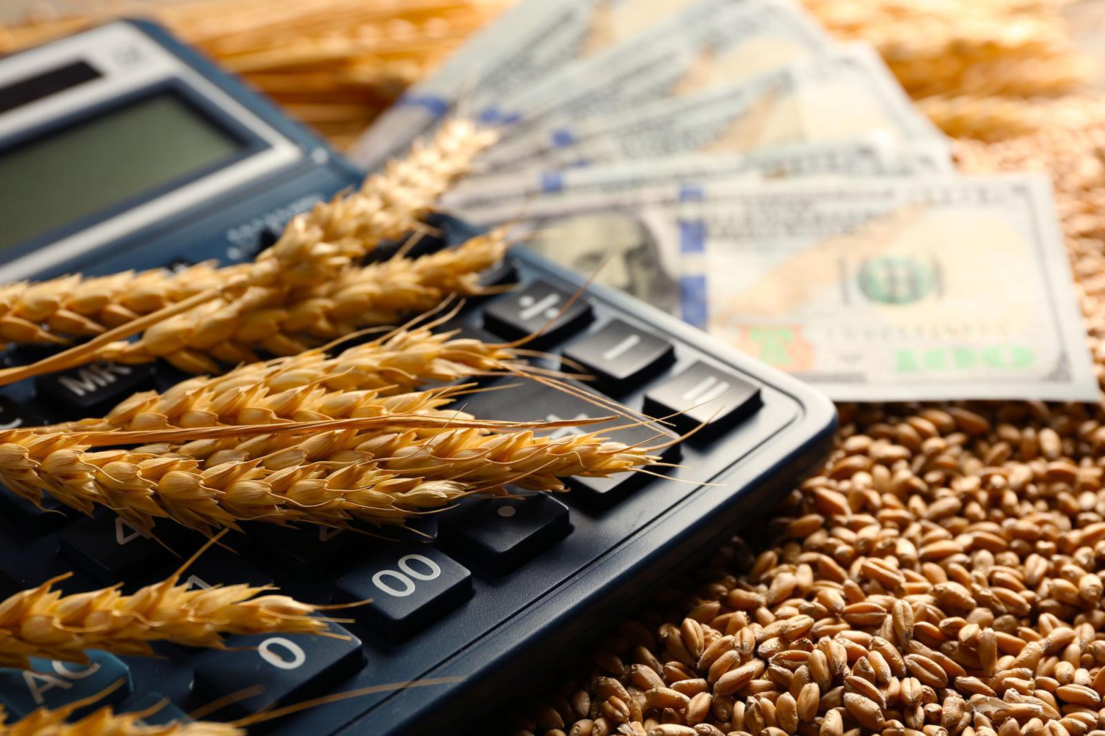 Брянские семьи могут получить по 100 тысяч рублей