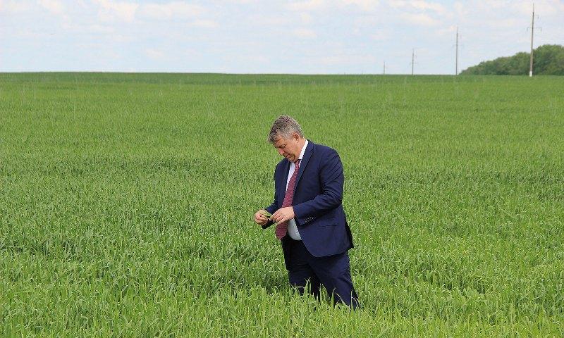 Александр Богомаз поделился аграрными секретами