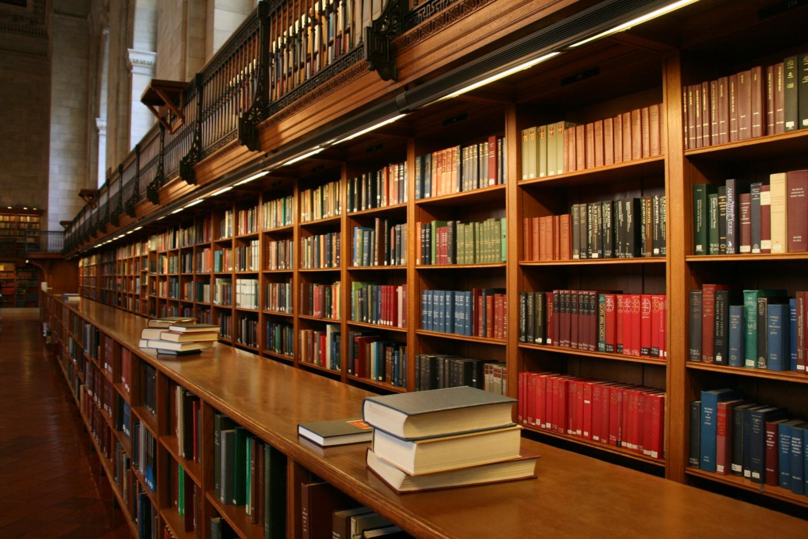 В Брянске в июне откроются библиотеки