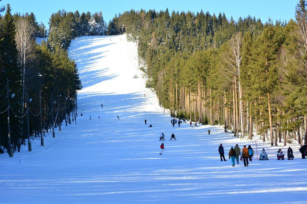 В Брянской области возведут лыжную базу Всероссийского уровня