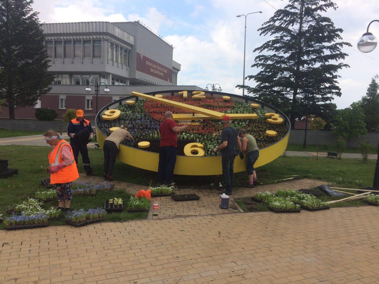В Брянске подготовили к лету цветочные часы на Набережной