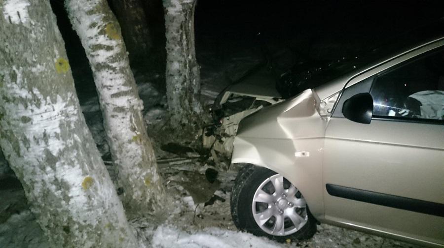 В ДТП на заснеженной трассе в Клинцовском районе пострадали два человека