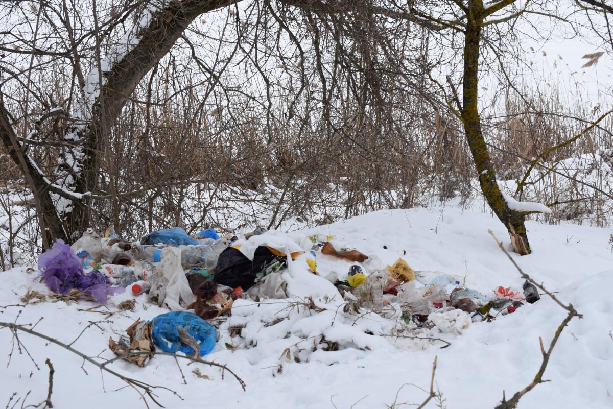 В Суземке неизвестные на тракторе с телегой вывалили мусор в роще