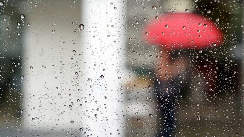 Завтра в Брянске обещают дождь с грозой