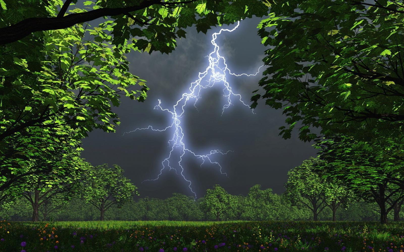 Завтра на Брянск обрушится дождь с грозой