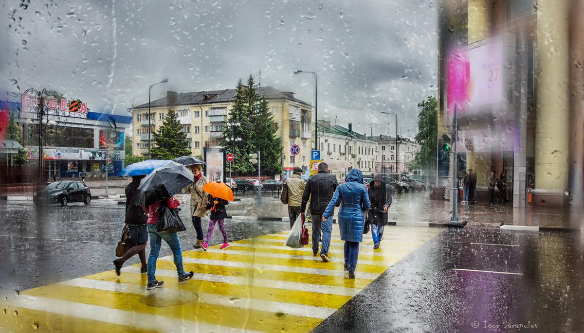 Завтра в Брянской области пройдут дожди с мокрым снегом
