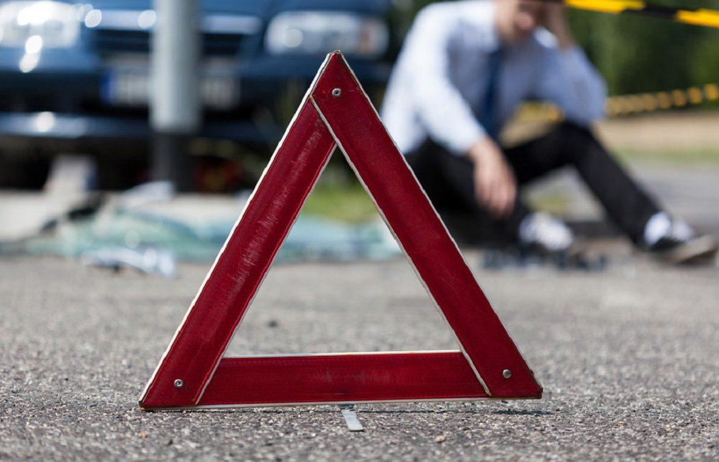 На брянской трассе животное разбило голову 23-летнему автомобилисту