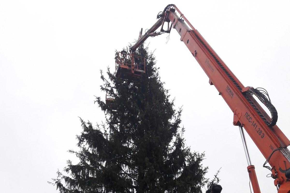 Жители Новозыбкова попрощались с новогодней елью