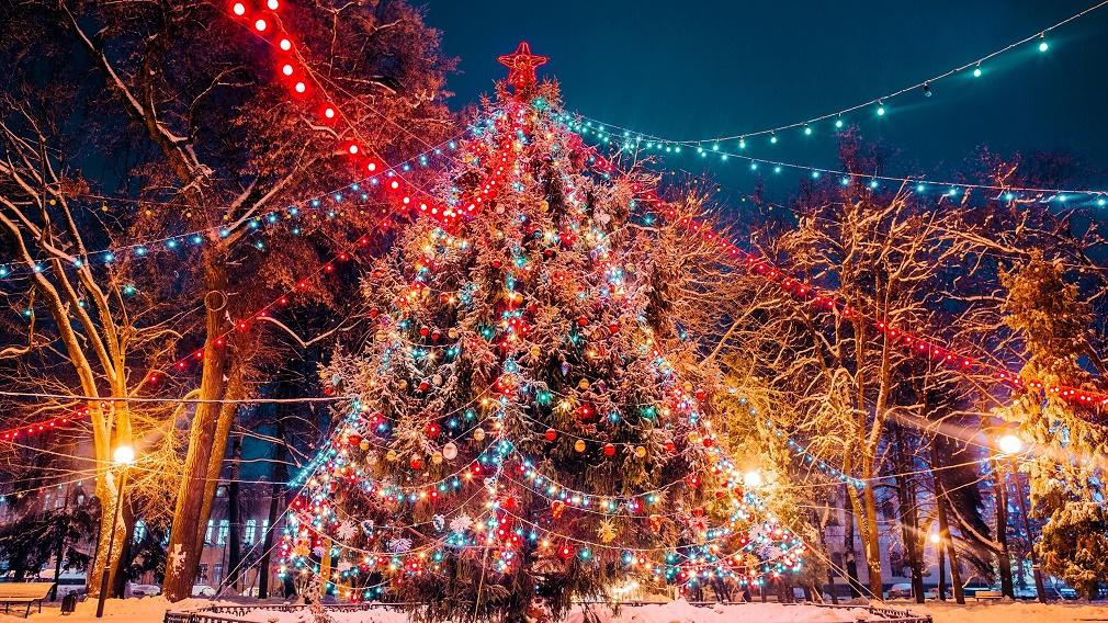 В новогоднюю ночь движение транспорта у новогодних брянских елок будет ограничено