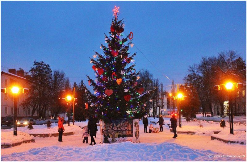 Фокинский район Брянска засиял новогодними огнями
