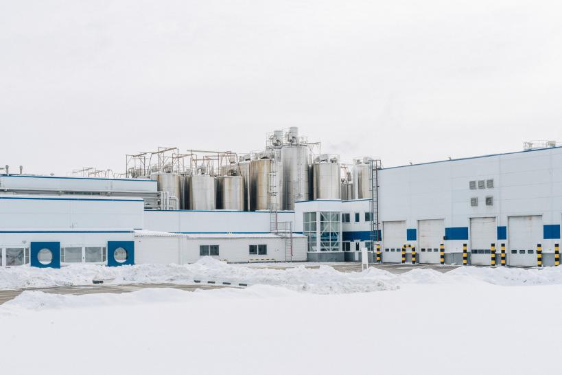 61 предприятие-фантом в Брянской области выявили за год